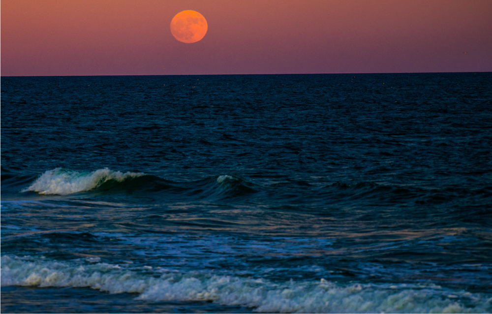 full moon over surf city - photo by Wayne Sumner 2019